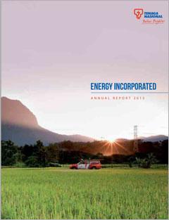 Tenaga Nasional Bhd 2013 Annual Report